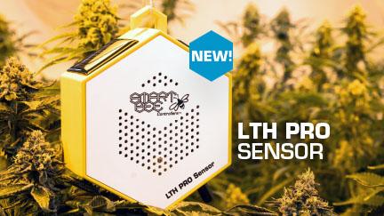 NEW! LTH PRO Sensor